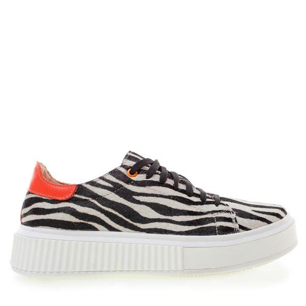 061-21-T110PL04X-zebra--2-