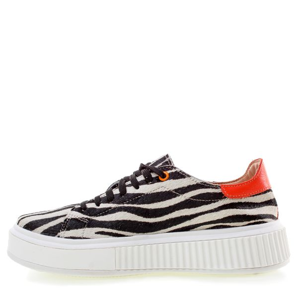 061-21-T110PL04X-zebra--6-